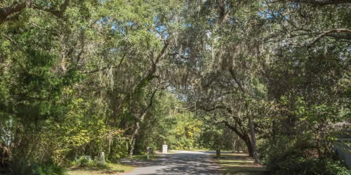 tree-lined streets in the Robledal Estates subdivision