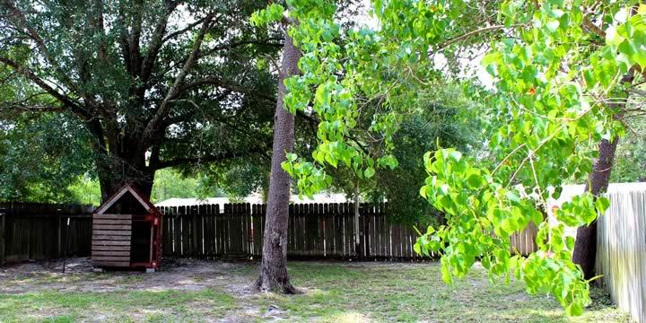 Backyard at 702 Dubois Drive